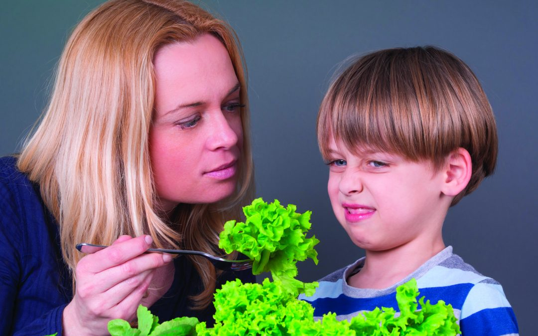 A Parents Guide To A Picky Eater